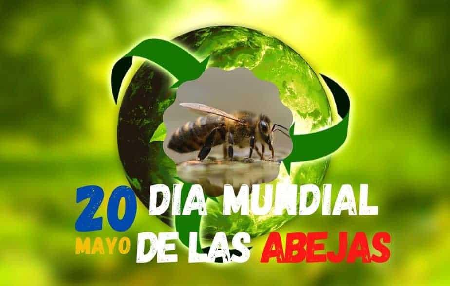 Celebración día de las abejas