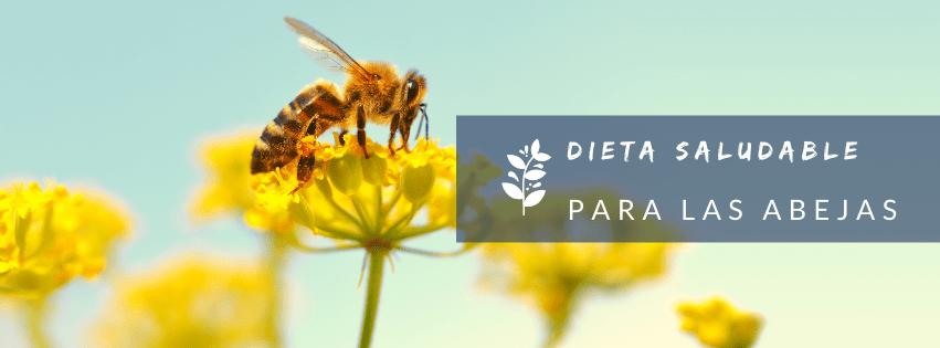 Dieta saludable para las abejas