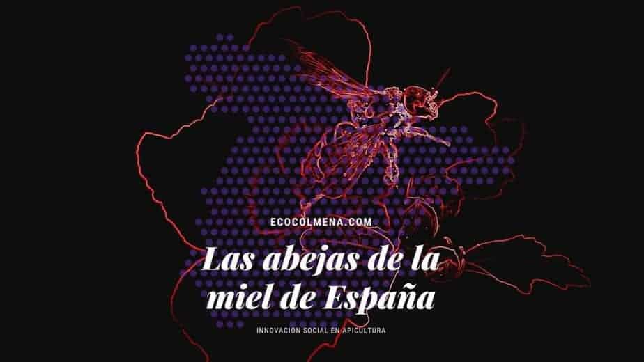 Evolución de las abejas de España