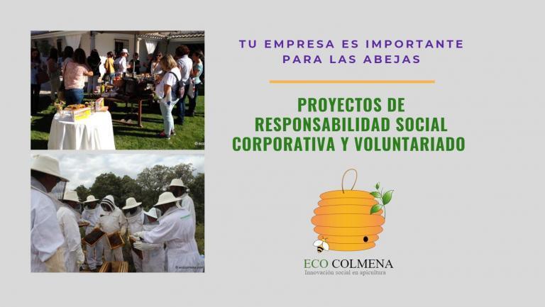 Proyectos de RSC y ODS con voluntariado corporativo