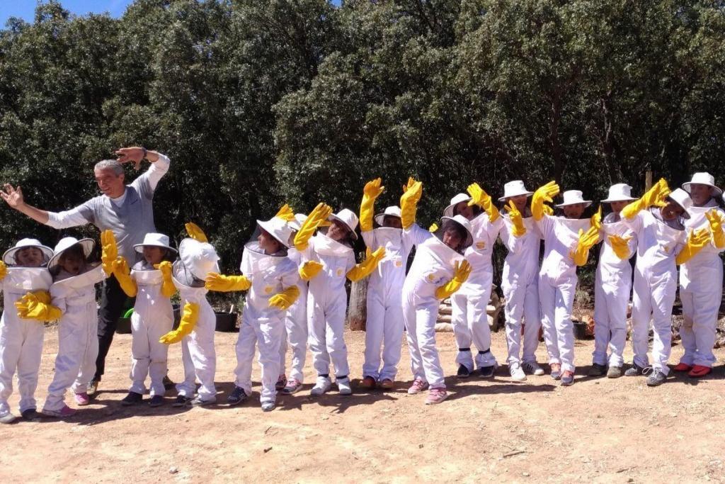 educación medioambiental en el apiario