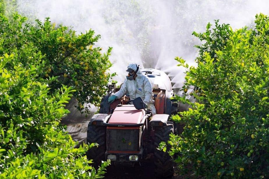 Tractor fumigando limones con químicos