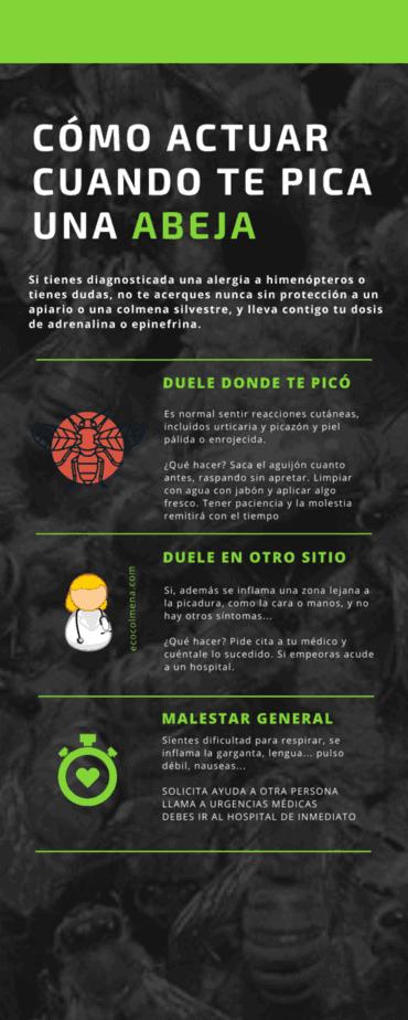 información sobre picaduras de abejas
