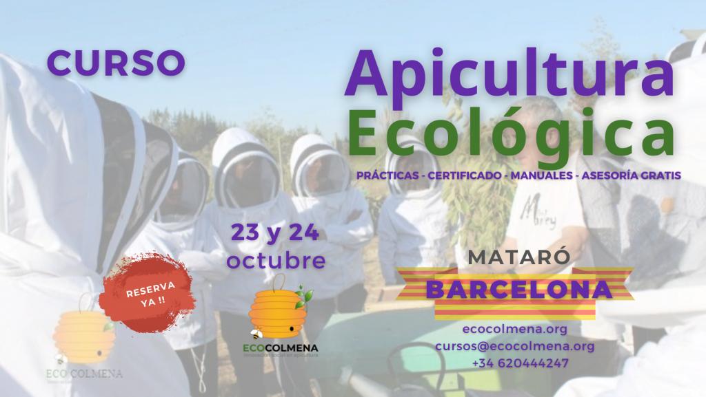 Curso de Apicultura en Barcelona el 23 y 24 octubre