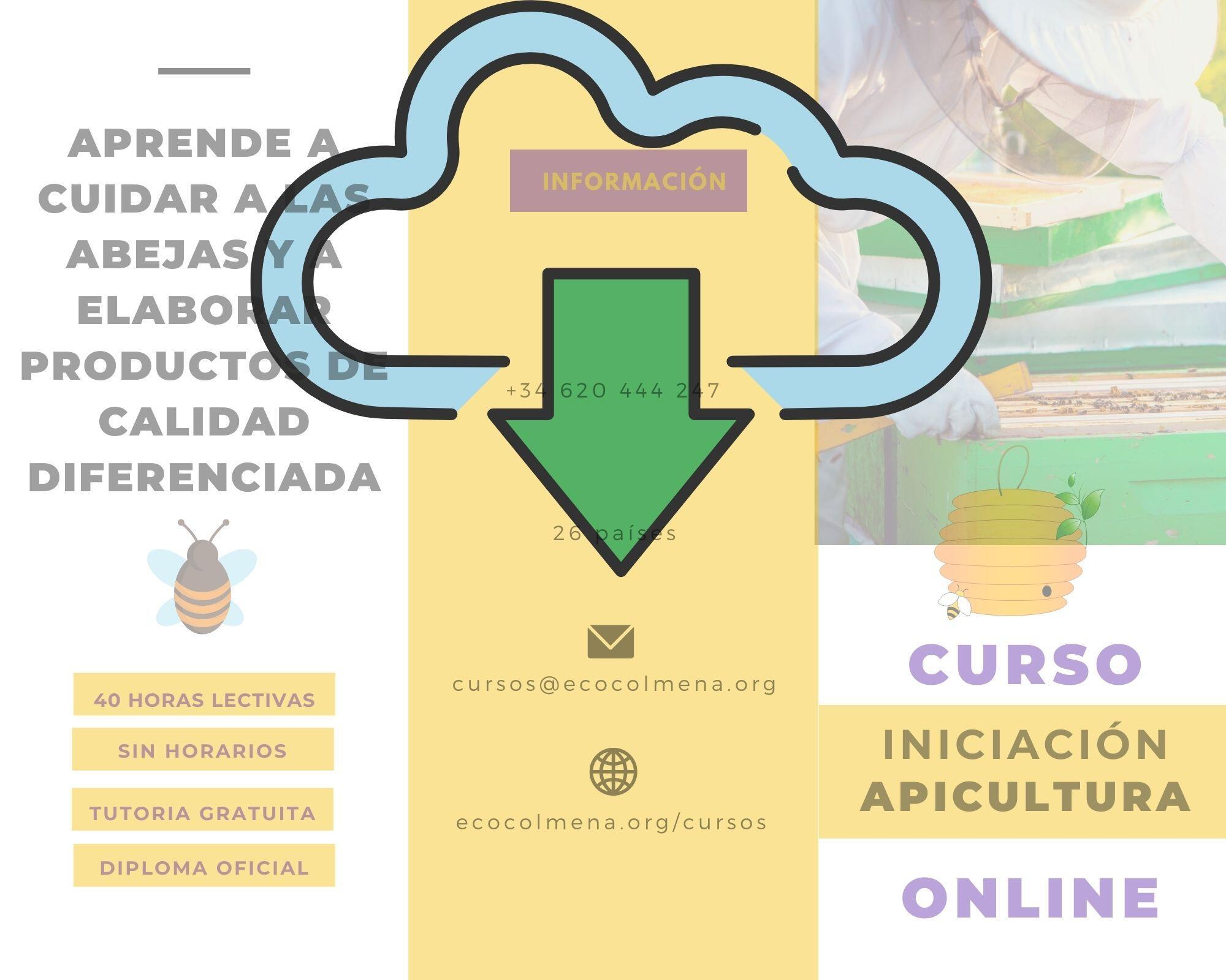 Descargar folleto Curso online iniciación de apicultura de Ecocolmena
