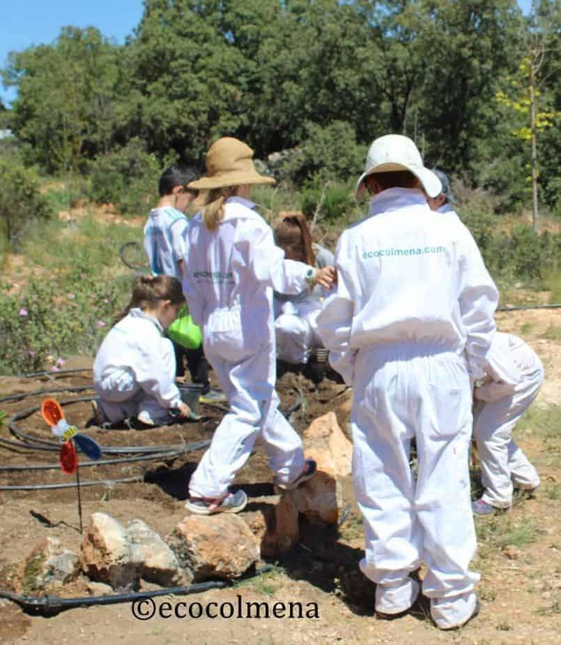 Niños creando un jardines