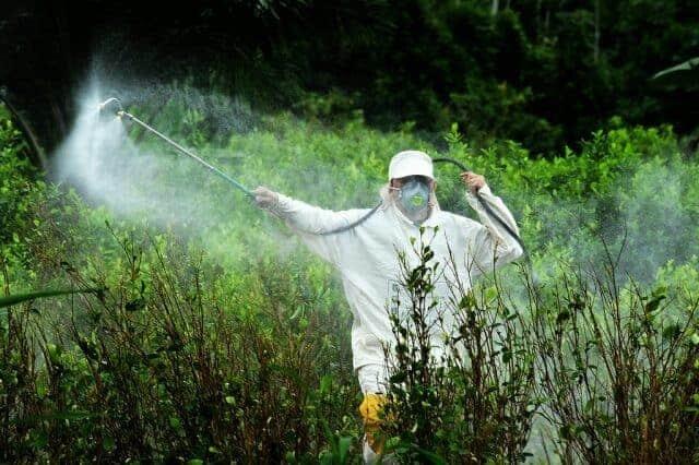 agricultor fumigando cultivos