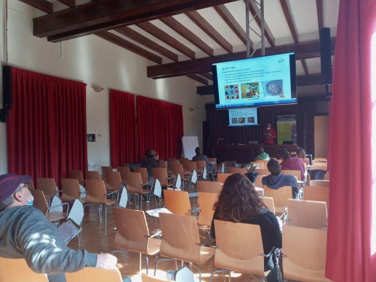 Apicultura Avanzado en EAF Girona