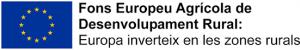 Fons Europeu